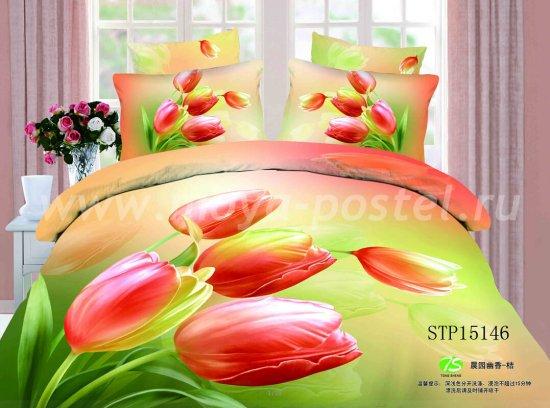 Комплект постельного белья SN-1974
