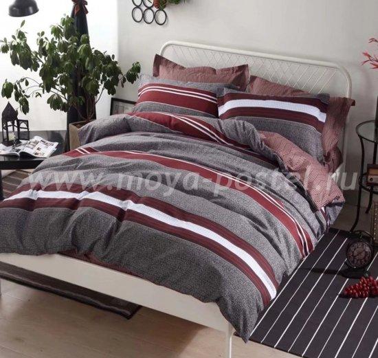 Постельное белье AC040 (2 спальное, 50*70) в интернет-магазине Моя постель