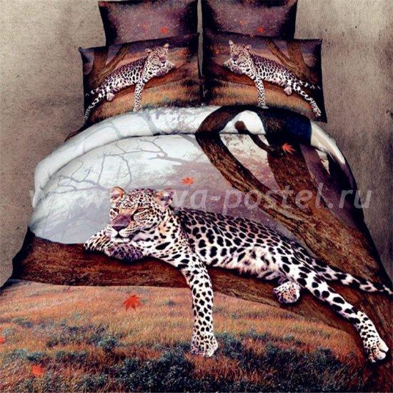 Постельное белье 3D D049 (2 спальное, 50*70) в интернет-магазине Моя постель
