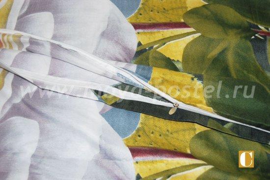 Постельное белье 3D M140 (евро, 50*70) в интернет-магазине Моя постель - Фото 4