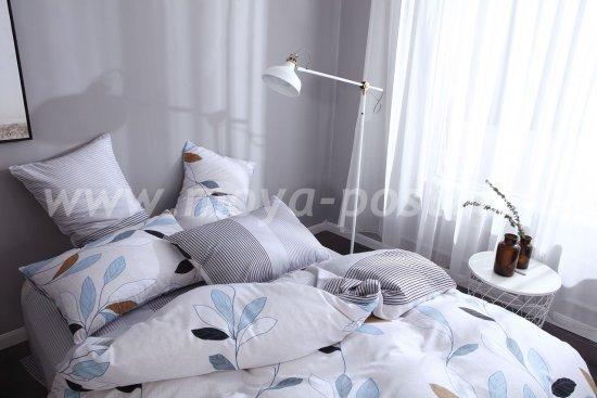 Комплект постельного белья Сатин C262 в интернет-магазине Моя постель - Фото 2