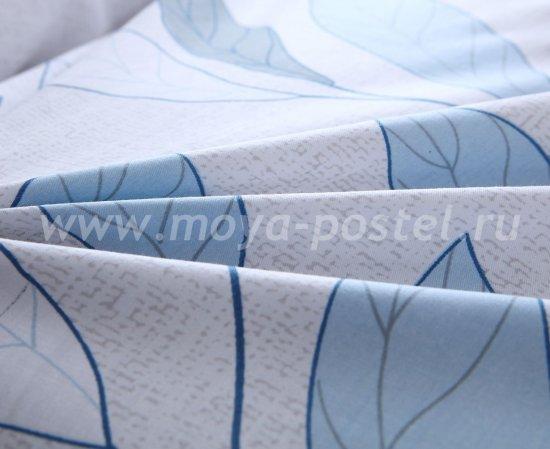 Комплект постельного белья Сатин C262 в интернет-магазине Моя постель - Фото 6