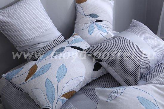 Комплект постельного белья Сатин C262 в интернет-магазине Моя постель - Фото 8