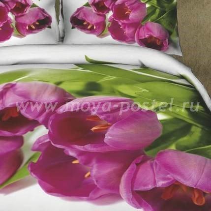 Постельное белье Seda TX-44-2 в интернет-магазине Моя постель