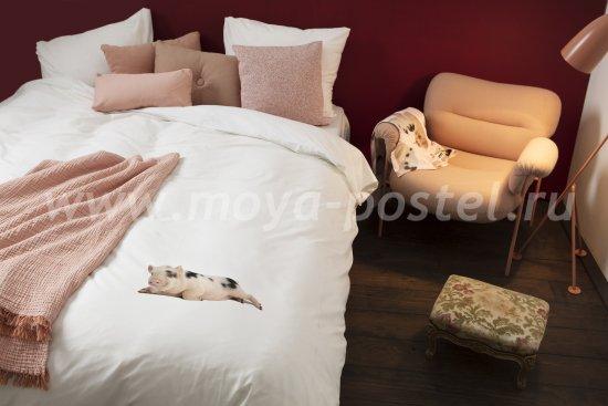 """Белый комплект постельного белья """"Поросенок"""", полуторный в интернет-магазине Моя постель"""