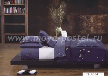 Комплект постельного белья SN-62 в интернет-магазине Моя постель