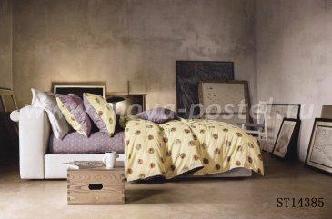 Twill семейный (мелкие звезды) в интернет-магазине Моя постель