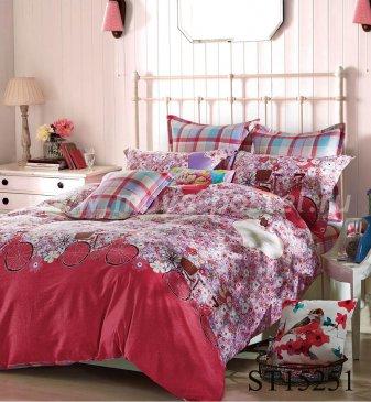 Комплект постельного белья SN-304 в интернет-магазине Моя постель