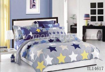 Комплект постельного белья SN-526 в интернет-магазине Моя постель
