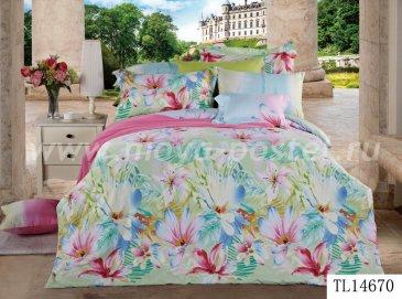 Комплект постельного белья SN-630 в интернет-магазине Моя постель