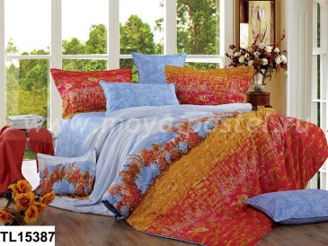 Комплект постельного белья SN-1151 в интернет-магазине Моя постель