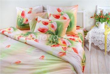 Комплект постельного белья SN-2190 в интернет-магазине Моя постель