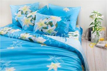 Комплект постельного белья SN-2194 в интернет-магазине Моя постель
