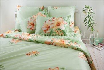Комплект постельного белья SN-2197 в интернет-магазине Моя постель