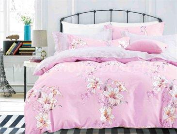 Комплект постельного белья SN-2225 в интернет-магазине Моя постель