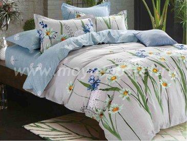 Комплект постельного белья SN-2248 в интернет-магазине Моя постель