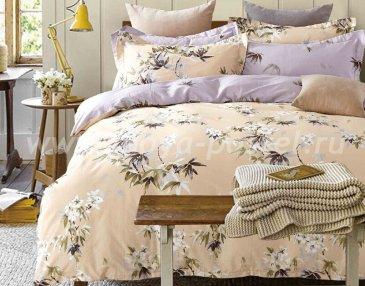 Комплект постельного белья SN-2249 в интернет-магазине Моя постель