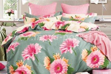 Комплект постельного белья SN-2263 в интернет-магазине Моя постель