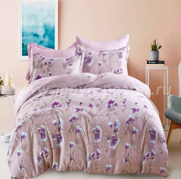 Постельное белье AC039 (2 спальное, 50*70) в интернет-магазине Моя постель