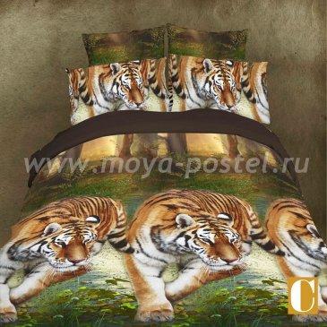 Постельное белье 3D M124 (евро, 50*70) в интернет-магазине Моя постель