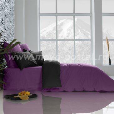 Постельное белье Perfection: Ультрафиолетовый + Уголь (евро) в интернет-магазине Моя постель