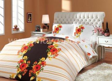 Коричневое с белым постельное белье «DREAM», двуспальное, ранфорс в интернет-магазине Моя постель