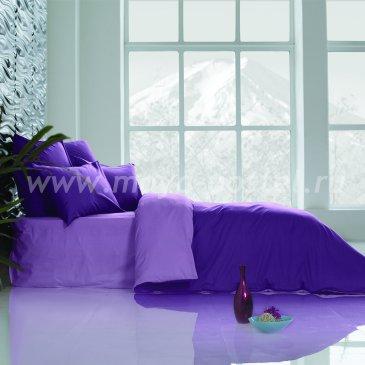 Постельное белье Perfection Цвет: Ультрафиолетовый + Лавандовый (семейное) в интернет-магазине Моя постель