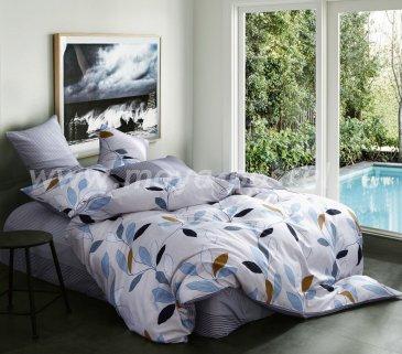 Евро комплект постельного белья из сатина C262 (50*70) в интернет-магазине Моя постель