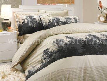 Бежевое постельное белье евро размера «TIERRA», поплин в интернет-магазине Моя постель
