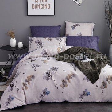 Комплект постельного белья Сатин вышивка CN040, евро размер в интернет-магазине Моя постель