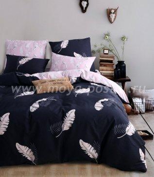 Комплект постельного белья Делюкс Сатин L143 в интернет-магазине Моя постель