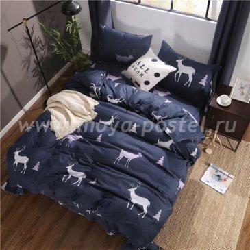 Постельное белье Модное CL003 (двуспальное, 70*70) в интернет-магазине Моя постель
