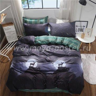 Постельное белье Модное CL011 (двуспальное, 50*70) в интернет-магазине Моя постель
