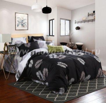 Постельное белье Модное CL025 (двуспальное 50*70) в интернет-магазине Моя постель
