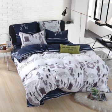 Постельное белье Модное CL027 (двуспальное, 50*70) в интернет-магазине Моя постель