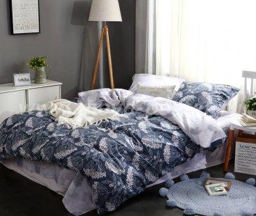 Комплект постельного белья Сатин C303 (полуторный 50*70) в интернет-магазине Моя постель