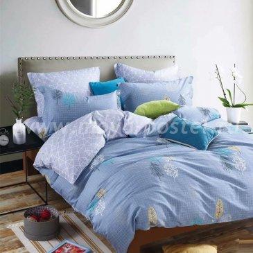 Постельное белье Arlet CD-544-3 в интернет-магазине Моя постель