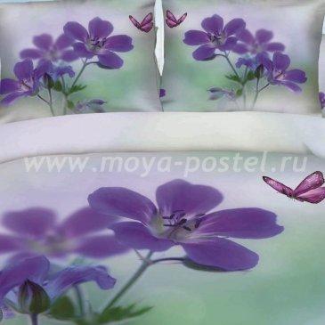 Постельное белье Seda TX-34-3 в интернет-магазине Моя постель