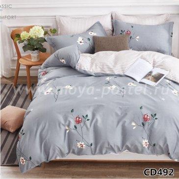 Постельное белье Arlet CD-492-1 в интернет-магазине Моя постель