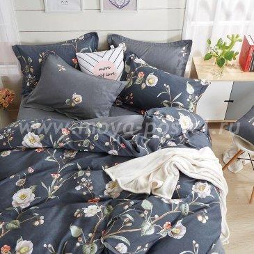 Постельное белье Kingsilk VX-116-2 в интернет-магазине Моя постель