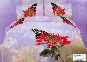 Кпб сатин Евро 2 наволочки (бабочка на красном цветке) в интернет-магазине Моя постель