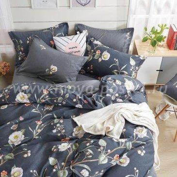 Постельное белье Kingsilk VX-116-3 в интернет-магазине Моя постель