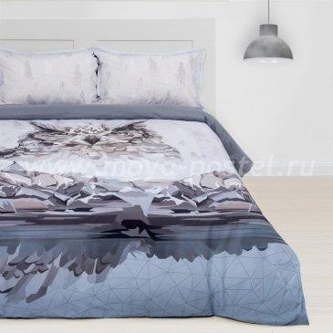 Постельное белье Этель ETR-694-1 Сова в интернет-магазине Моя постель