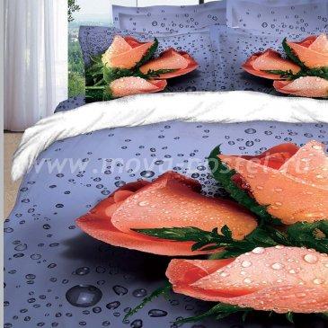 Постельное белье DA Premium-3D PR-041-2 в интернет-магазине Моя постель