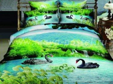 Кпб сатин Евро 2 наволочки (черные лебеди) в интернет-магазине Моя постель