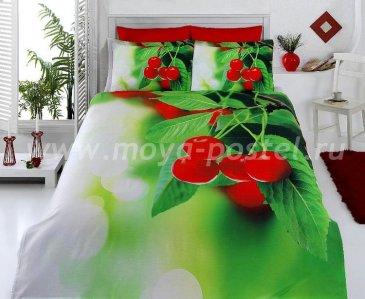 КПБ Bamboo 3D Digital Т19212 в интернет-магазине Моя постель