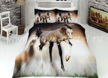 КПБ Ranforce VS 3D Digital (жеребенок с подпалинами) в интернет-магазине Моя постель