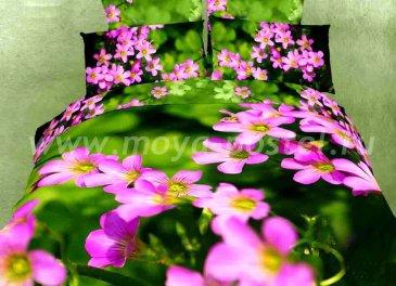 Полуторное постельное белье сатин TS01-581 в интернет-магазине Моя постель