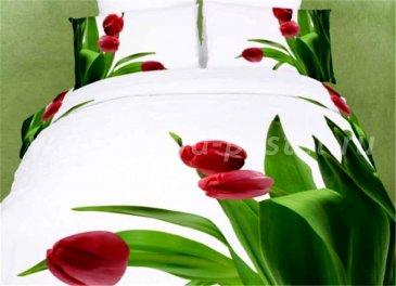 Постельное белье евро стандарта сатин 2 наволочки (три тюльпана) в интернет-магазине Моя постель
