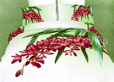 Кпб сатин Евро 2 наволочки (красные цветы на ветке) в интернет-магазине Моя постель